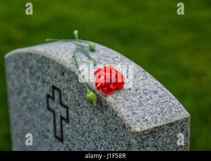 American flag and Red Rose on a veterans tombstone at Tahoma American National Cemetery. 24 May, 2015 - Stock Photo