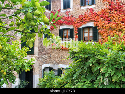 MALLORCA/SPAIN - 20 NOVEMBER 2016: Buildings surrounded by colorful flowers in the village of Valdemossa - Stock Photo