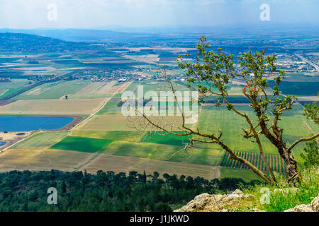 The Jezreel Valley landscape, viewed from Mount Precipice. Northern Israel - Stock Photo