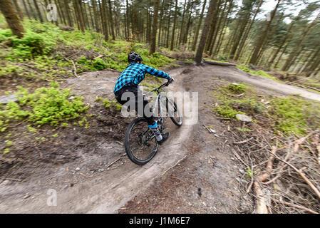 Mountain biking in Surrey hills - action shot - Stock Photo