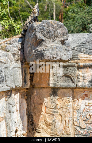Iguana on the Platform of the Eagles and Jaguars in Chichen Itza, Mexico - Stock Photo