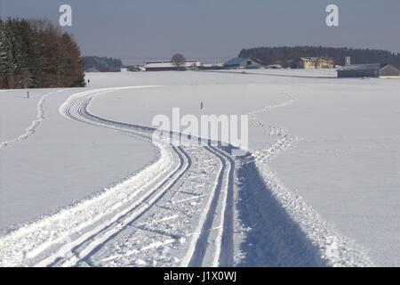 frisch gespurte Loipe  in Winterlandschaft (Niedling im Hintergrund); cross country skiing  trail through rural - Stock Photo