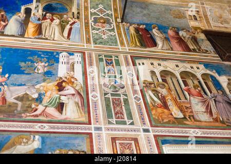 PADUA, ITALY - APRIL 1, 2017: wall decoration in Scrovegni Chapel (Cappella degli Scrovegni, Arena Chapel). The - Stock Photo