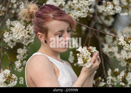 Young woman in front of cherry blossoms, portrait - Stock Photo