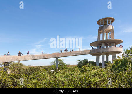 Miami, Fl - March 15, 2017: The Shark Valley Observation Tower in the Everglades National Park. Florida, United - Stock Photo