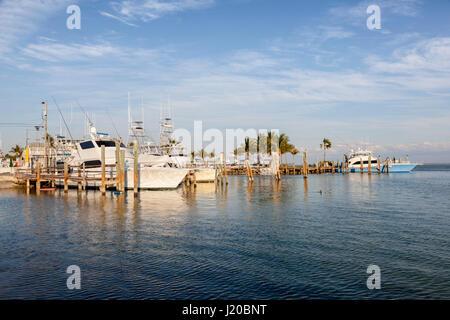 Florida key west florida keys key west tropical forest for Deep sea fishing west palm beach