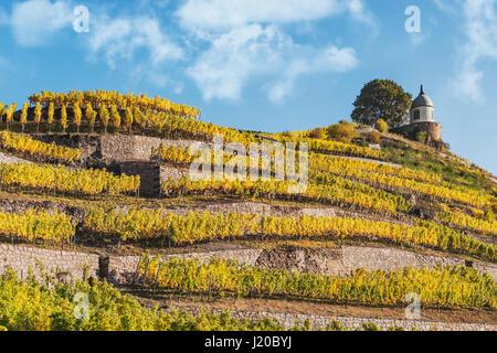 The Jacobstein is a vineyard gazebo near Castle Wackerbarth in Radebeul near Dresden,administrative district Meissen, - Stock Photo