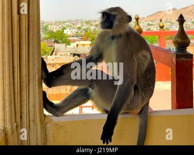 Major Tourist Spots in Jaipur, Rajasthan, India - Stock Photo