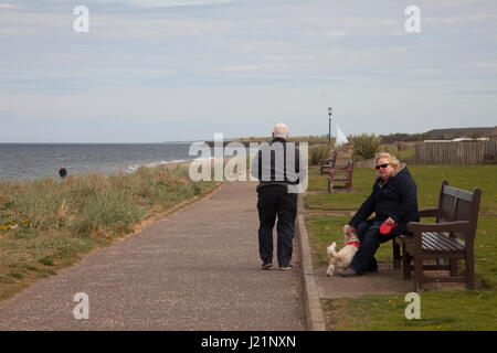 Edinburgh, Scotland, UK. 23rd Apr, 2017. Older couple sitting on the bench near the beach in Musselburgh, Edinburgh, - Stock Photo