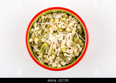 Pea seeds with sprouts in bowl close up macro shot top view - Stock Photo