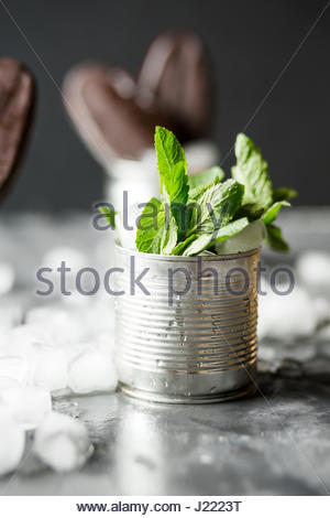 Chocolate ice cream on a stick in an iron jar on a black background. Chocolate dessert. Ice. Fresh mint - Stock Photo