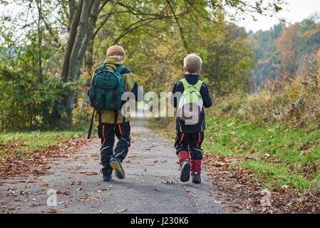 Back view of two little boys with backpacks walking side by side in autumnal nature - Stock Photo