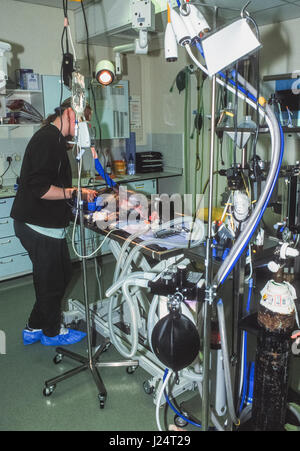 A veterinary nurse in the operating theatre at the Blue Cross Animal Hospital, Victoria, London, United Kingdom - Stock Photo