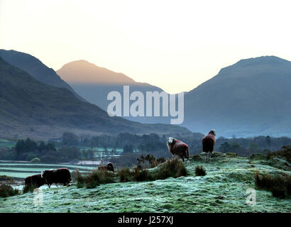 Sun rising on a frosty spring morning in the Englsh Lake District, Wastdale, Cumbria - Stock Photo