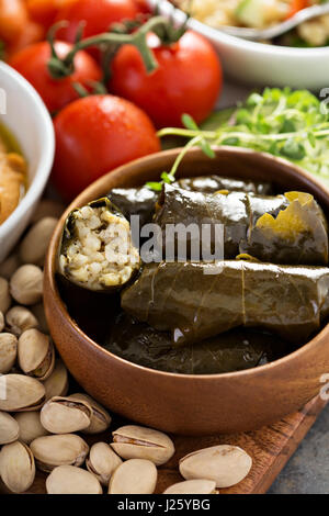 Dolmades, Stuffed Grape Leaves with rice and lemon filling - Stock Photo
