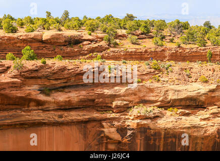 Grand Junction, USA - May 28, 2016: Cyclist on the Rim Rock Drive, the road going through the Colorado National - Stock Photo