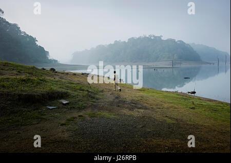 Periyar National Park in Thekkady,Kerala, India is located around the Mullaperiyar Dam's reservoir. - Stock Photo