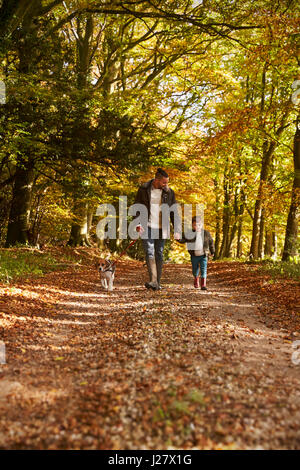 Father And Son Walking Dog In Autumn Woodland Together - Stock Photo
