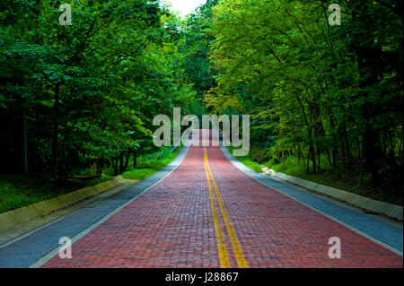 Image of a red brick road leading off into the distance thru a wooded area - Stock Photo