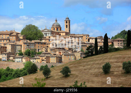 View of Urbino, with the Cathedral and the old city, Marche, Italy - Stock Photo