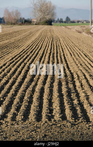 Freshly plowed ground in the Tuscan landscape - Stock Photo