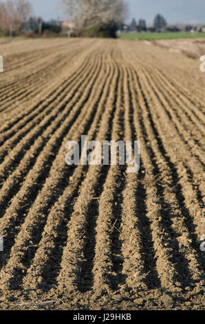 Freshly plowed ground in the Italian landscape - Stock Photo