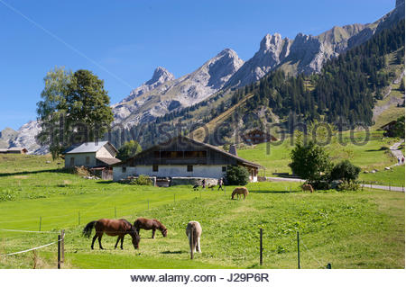 France, Eastern France, mountain range of the Aravis, La Clusaz, traditional chalet in Confins and Aravis summits - Stock Photo