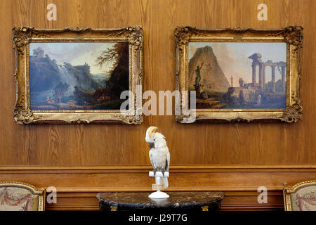 France,Paris, 8th district, Petit Palais. Stuffed Cockatoo in the foreground. - Stock Photo