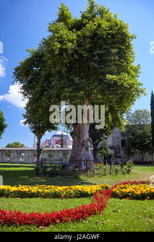 The view of Hagia Sophia from the courtyard of Sultan Ahmed Mosque (Blue Mosque) in Istanbul. Turkey - Stock Photo