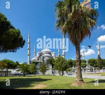 The view of Sultan Ahmed Mosque - Blue Mosque  from Sultan Ahmet Park, Istanbul, Turkey. - Stock Photo