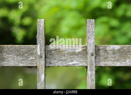 Old wooden bridge fence plank covered in lichen and moss and green woodland background - Stock Photo