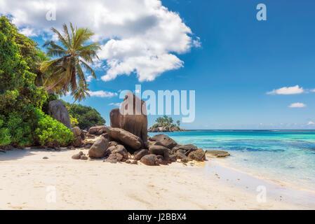 Palm trees and rocks on white sand beach, Mahe island, Seychelles - Stock Photo