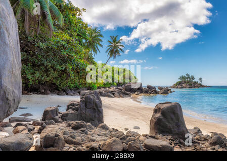 Palm trees and beautiful rocks on the beach, Mahe island, Seychelles - Stock Photo