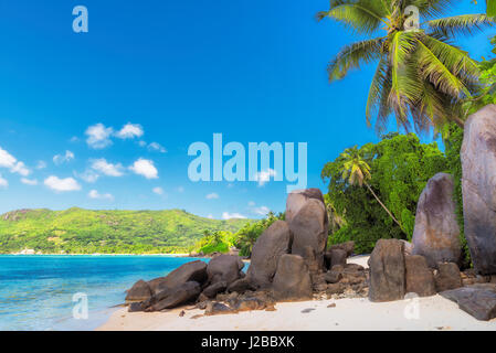 Palm trees and granite rocks on the beach, Mahe island, Seychelles - Stock Photo