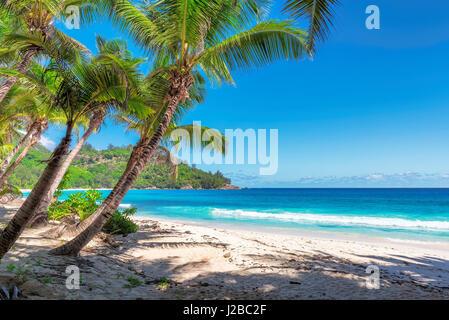 amazing Anse Intendance beach, Mahe island, Seychelles. - Stock Photo