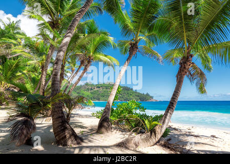 View over the amazing Anse Intendance beach, Mahe island, Seychelles. - Stock Photo