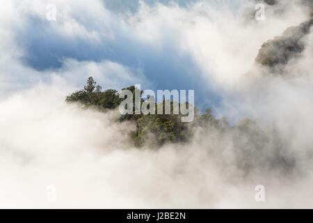 Above the clouds in the mountains, Santo Antao, Cape Verde - Stock Photo