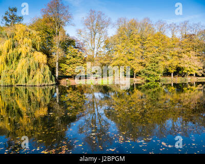 Riverside Tree Reflections, Pangbourne-on Thames, Reading, Berkshire, England - Stock Photo