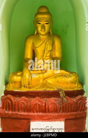 Myanmar. Yangon. Shwedagon Pagoda Small bird visits a Buddha statue in a niche. - Stock Photo
