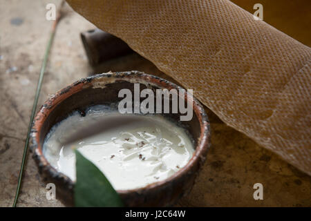 Thailand, Samui Island, Ko Samui. Rubber tree plantation. Dish of raw white latex sap with rubber mat ready for - Stock Photo