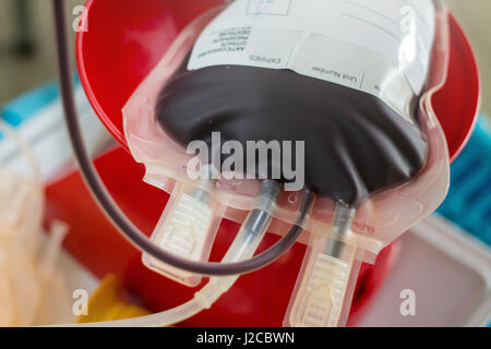Blood bag obtained from blood donation - Stock Photo