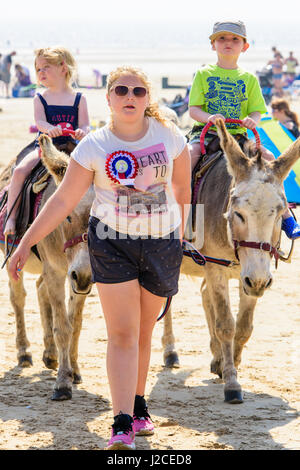 Donkey ride for two small children on Dymchurch beach on a sunny afternoon. - Stock Photo
