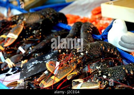 Paris sea food market - Stock Photo