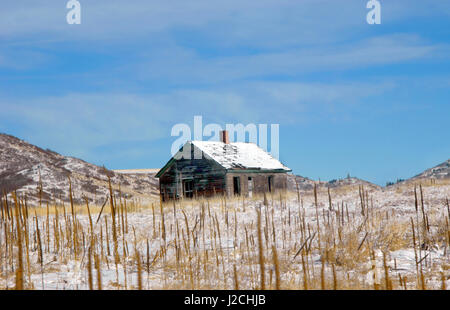 Old, abandoned farm house sits in the foothills of the Colorado Rocky Mountains.  Bare field is covered in weeds. - Stock Photo