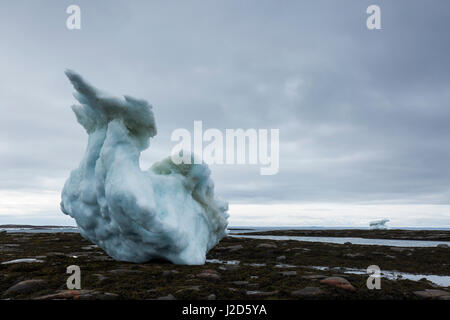 Canada, Nunavut Territory, Repulse Bay, Massive icebergs grounded at low tide in Harbor Islands on summer afternoon - Stock Photo