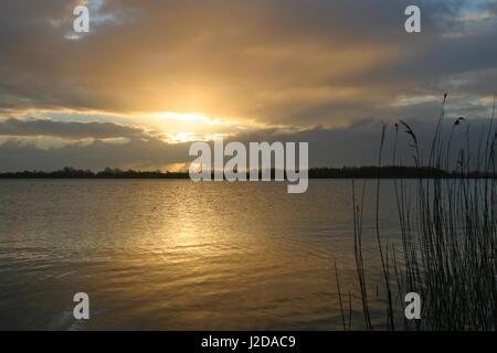 Sunrise above the Stootersplas in Natura2000 area het Twiske - Stock Photo
