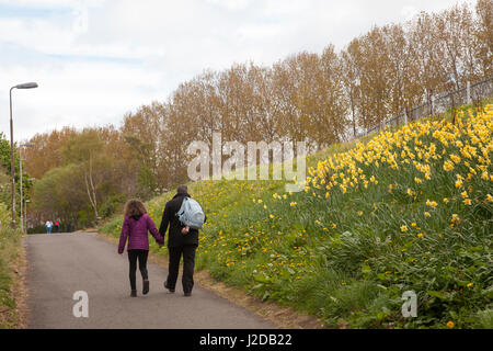 Dalry, Edinburgh, UK. 27th Apr, 2017. UK Weather. Man and his daughter walking on an overcast day in Dalry, Edinburgh, - Stock Photo