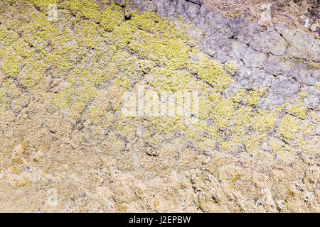 Natural stone texture, moss covered. - Stock Photo