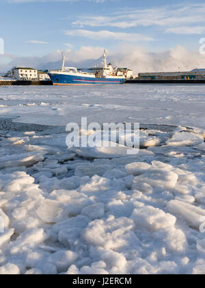 The frozen harbor of the small town Hoefn during winter. In the background the mountains of Stokksnes. Iceland (Large - Stock Photo