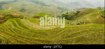 Rice paddies with little village in Guangxi province - Stock Photo